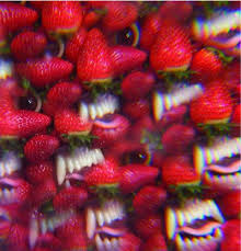 41ohsees